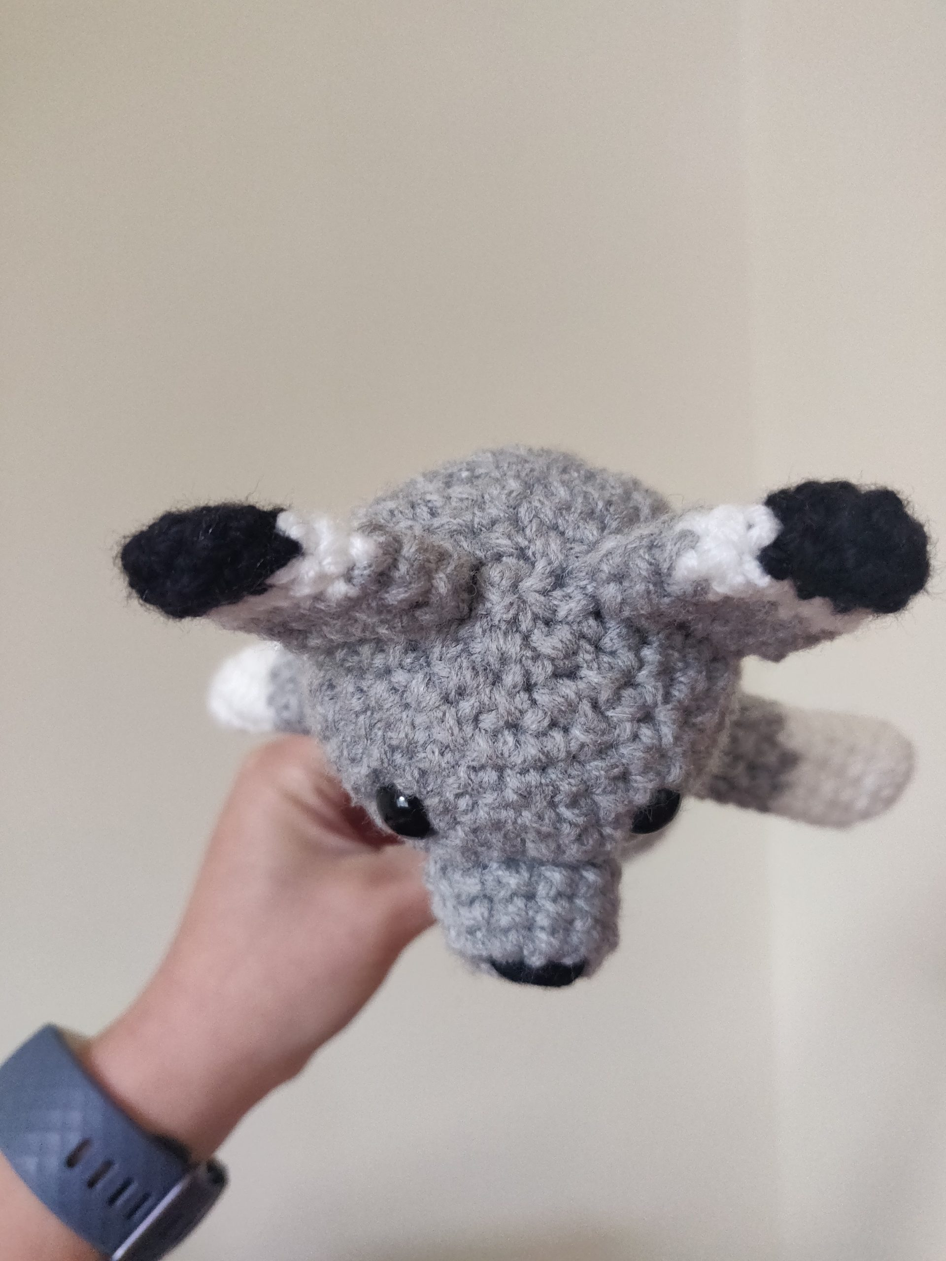 Ear placement photo for small crochet wolf.